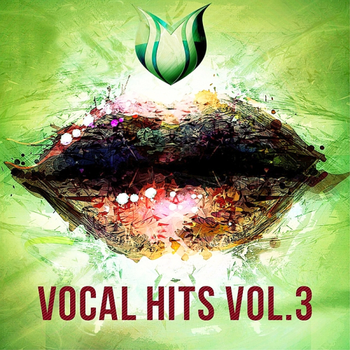 Vocal Hits Vol 3 (2017)